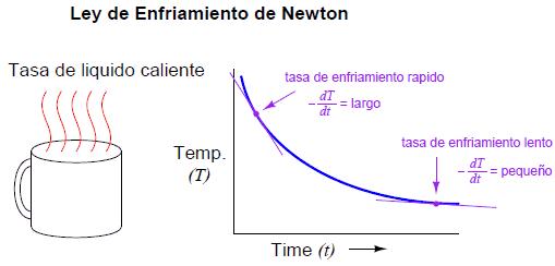 Ley Enfriamiento Newton